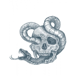 Tattooed Now! - Skull with Snake