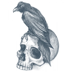 Tattooed Now! - Raven with Skull